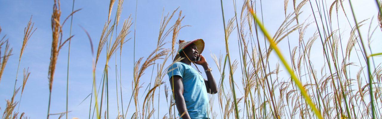 Informations Clé sur le Sénégal 2